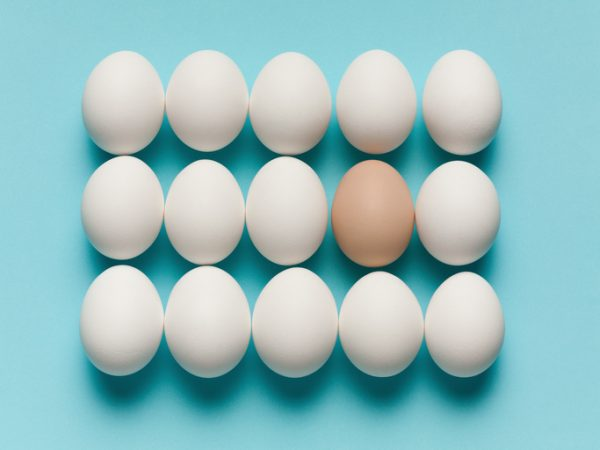 Brown egg with large white eggs